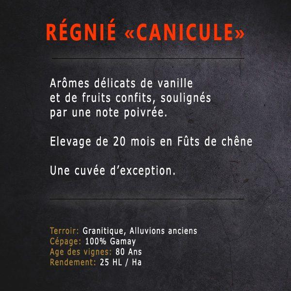 Régnié Canicule - Descriptif - Domaine Tano Péchard - Vins du beaujolais