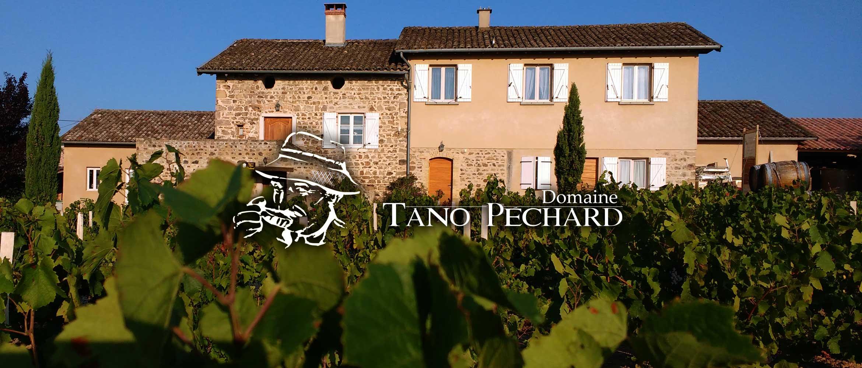 tano-pechard-slide-domaine-1000